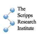The Scripps Research Institute